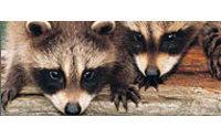 Le site du Salon de la fourrure détourné par des défenseurs d'animaux