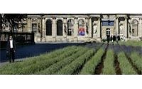 Les Rendez-vous aux jardins ont accueilli 1,5 million de visiteurs