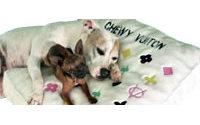 Poursuivi par LVMH, un fabricant de jouets pour chien perd 1 million de dollars de ventes