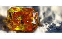 Une Britannique s'offre une bague de diamants faite des cendres de ses animaux