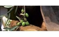 Olive oil producers seek Chinese, Indian buyers