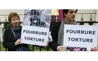 Une vingtaine de manifestants anti-fourrure avenue Montaigne à Paris