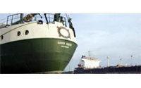 Greenpeace blockades palm oil ship in Indonesia