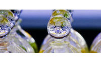 Unas 2.500 personas visitan Mercaperfume, que ha reunido más 11.000 perfumes