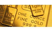 L'once d'or pourrait battre ses records en 2009
