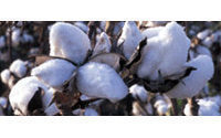 India cotton exports seen reviving in 2009/10
