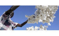 India cotton acreage to rise on higher price