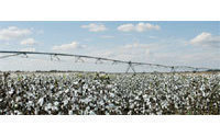 Australia bets on quality to sell cotton crop