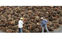 Palm oil buyers face green scorecard
