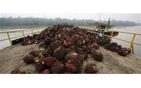 Competitors behind palm oil slurs according to industry boss