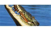 Hermes breeds own crocs to meet bag demand