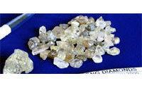 Petra says interest strong in 507 carat diamond