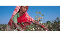 India's ban on cotton exports to hit Bangladesh