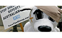 Leading retailers threaten Australian wool boycott