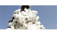 'Peace cotton' smooths its way into Benin