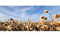Egypt's Alcotexa sells 2,815 tonnes cotton in past week