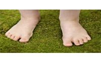 Мягкий мох под ногами