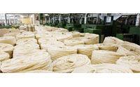 Anadolu'da peş peşe fabrikalar kuruluyor