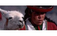 La Feria de los Santos Mártires expone ejemplares de alpacas