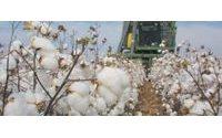Pamuk hasadında makine payı % 40'lara yükseldi