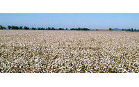 US cotton falls 7-cent limit before delivery notices