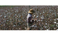 Analysis: Brazil brings farming muscle to corn and cotton