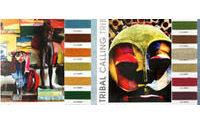 Design Options : Young men's color spring / summer 2010