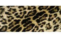 El leopardo también pisa fuerte para los hombres