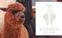 Perú promociona su alpaca en Rusia y espera importantes negocios para este invierno