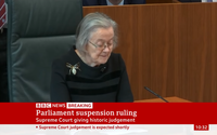 A tangled web: UK judge's #spiderbrooch goes viral