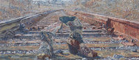 Bata shoe museum to open special exhibition by Marco Sassone