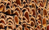 Penedo negoceia cork.a.yarn com cadeias multinacionais