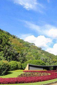Casa Cavanella Niemeyer