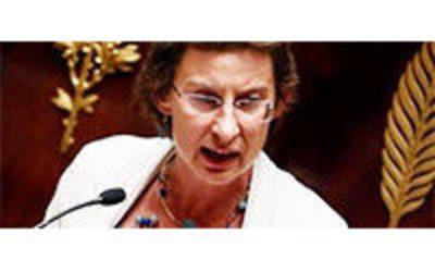 Martine pinville prend le secr tariat d 39 etat au commerce for Commission commerce et artisanat decazeville murat