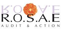 ROSAE AUDIT & ACTION