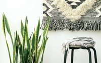 UK home décor market to outperform all other home sectors