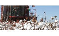 Importações de algodão da China caem 42% nos primeiros 9 meses de 2015