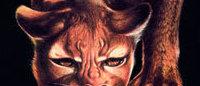 Gewinn bei Puma bricht massiv ein