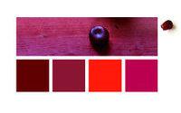 Promostyl : Les Rouges Écarlates, point fort couleur - SS16