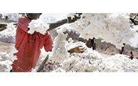 Weltweite Baumwollvorräte lassen Preise sinken