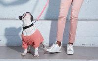 Cache Cache habille aussi les chiens