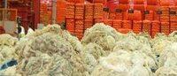 NFU bats for teamwork to boost British wool market