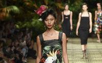 Dolce & Gabbana en mode Mogambo