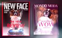 Review kommt auf den Hund