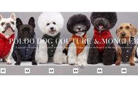 Moncler выпустил пуховики для собак