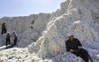 Stocks de algodão mundial em queda