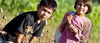 Ouzbékistan : au moins six morts dans les champs de coton en octobre