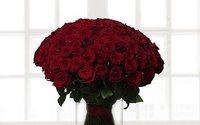 """Холдинг """"585 / Золотой"""" купил комплекс по выращиванию роз"""
