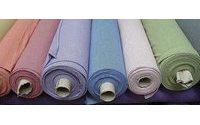 Operários de têxtil de Esposende, fechado em 2011, ainda têm 1,3 ME a receber