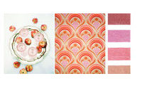 Design Options:  Color Trend Mood Boards SS 2017
